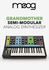 Moog Grandmother Halvmodulær Analog Synthesizer